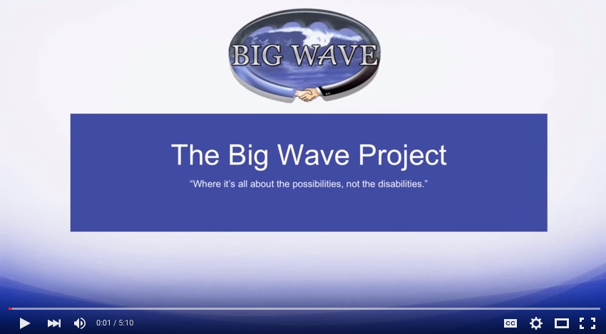 the wave individuals and their The wave study guide contains many of the students in the wave think they must put aside their individual needs to of high school life that individuals must.